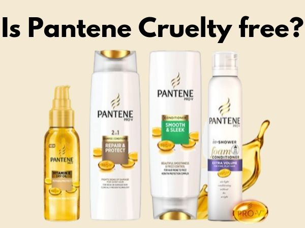 Is Pantene Cruelty-Free and Vegan?
